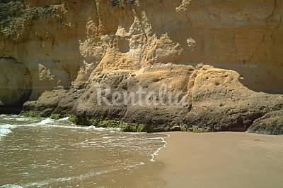 Playa Waikiki - Photo 1