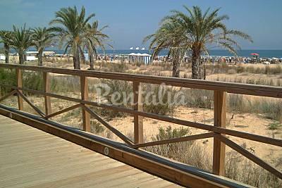Playa gandia en gandia valencia apartamentos y casas - La casa del pintor gandia ...