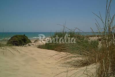 Los Tusales beach - Photo 1