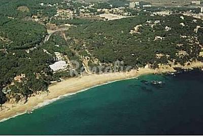 Cala Gogo (Treumal) beach