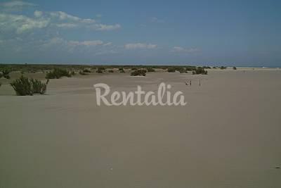 Playa de Buda beach