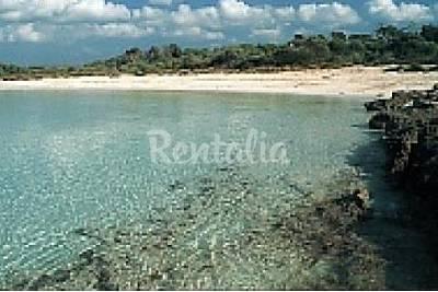 Playa Arenal de Son Saura