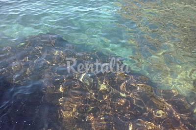Cala del Cañuelo beach