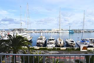 Appartement en location à 600 m de la plage Alicante