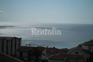 Appartement en location à 1000 m de la plage Île de Madère