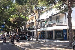 Via Bafile, Piazza Brescia, 150 meters from sea Venice