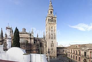 UNFORGETTABLE!!!!! SATISFACTION GUARANTEED Seville