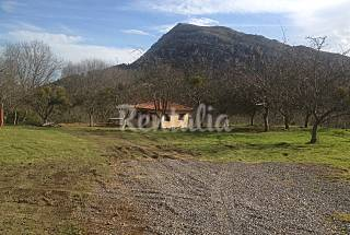 Casa para 1-2 personas a 2 km de la playa Asturias