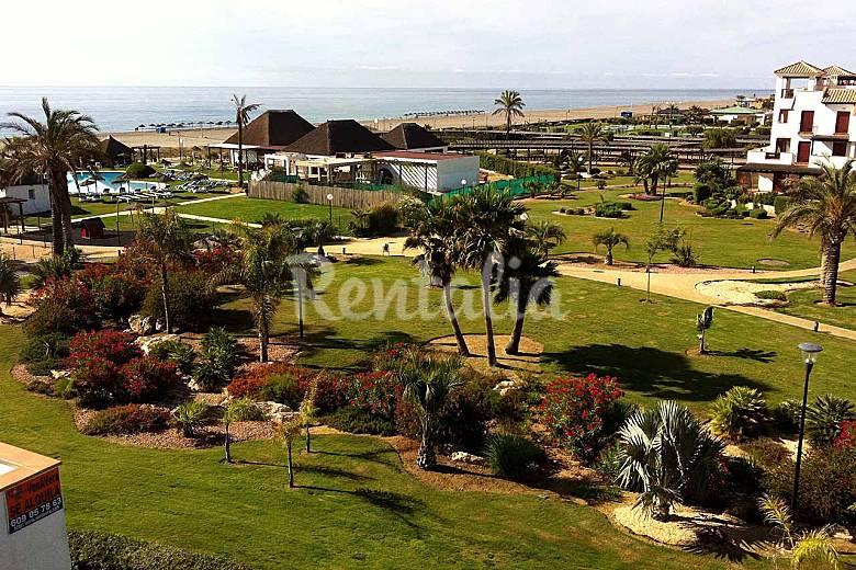 Venavera bajo jardin e10a 2dorm 1ba o salida playa vera for Jardin 88 doris vera hermoza
