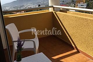 Views, peace, gardens, barbecue -  La Palma