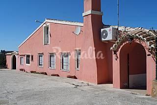 La Pinaeta Valencia