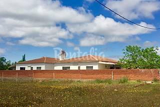 Casa para 12-14 personas en El Robledo Ciudad Real