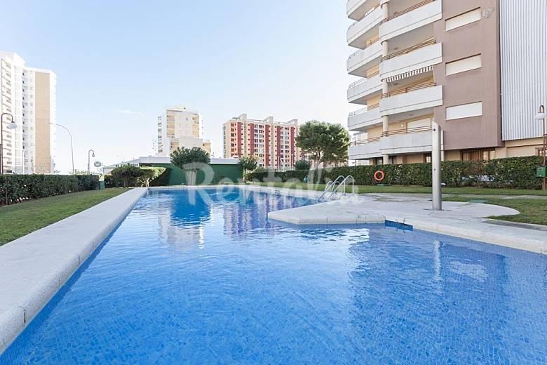 Apartamento en alquiler en valencia gandia valencia - Apartamentos en alquiler en valencia ...