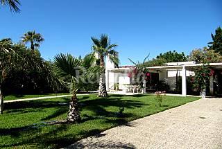 Villa for rent on the beach front line, Almeria Almería