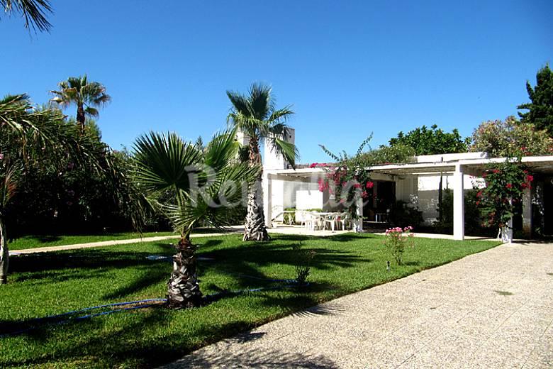 Villa en alquiler en 2a l nea de playa puerto rey vera for Jardin 88 doris vera hermoza