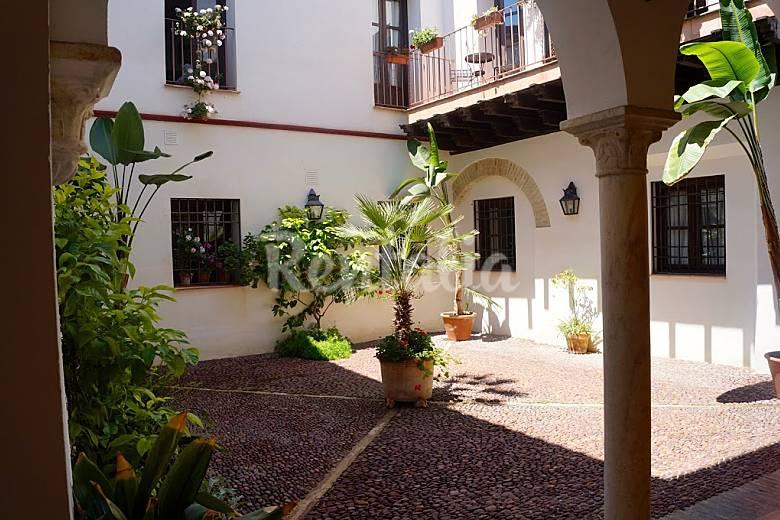 Apartamento en alquiler en c rdoba el tejar benamej c rdoba - Apartamentos turisticos la castilleja cordoba ...
