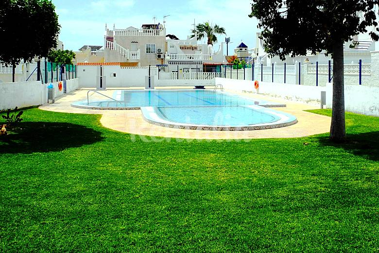 Casa en alquiler en torrevieja torrevieja alicante for Piscina torrevieja