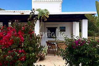 Apartment for rent only 1500 meters from the beach Ibiza