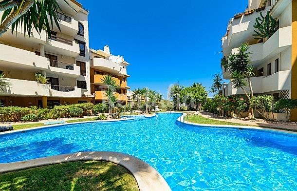 Apartamento en alquiler en alicante punta prima torrevieja alicante costa blanca - Alquilar apartamento en torrevieja ...