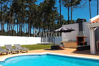 Villa / Wifi, Pool, near beaches and lisbon Setúbal