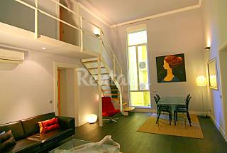 Large apartments with 1-33 bedrooms, 2-3 baths. Madrid