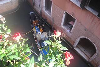 Apartamento para 9 personas a 1000 m de la playa Venecia