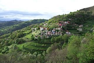 Maison de 2 chambres dans un environnement montagneux Asturies
