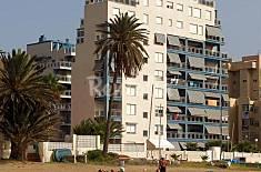 4 Apartamentos en alquiler a 100 m de la playa Murcia