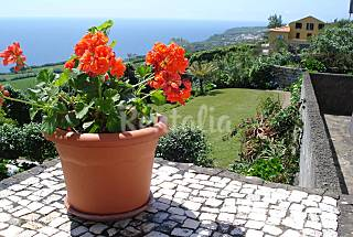 Quinta do Sol Poente - house 9 km from the beach São Miguel Island