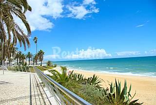 Joana - Apartamento 4-6 pessoas a 100 m da praia  Algarve-Faro