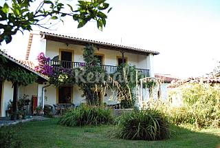 House with 5 bedrooms 4 km from the beach Asturias