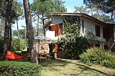 villa, in the pine forest, near the beach Lisbon
