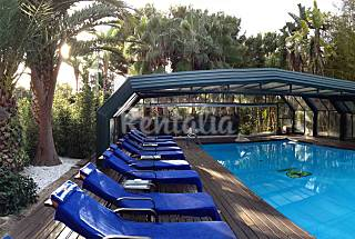 Decorated Villa with heated pool and Spa 14-16 people Alicante