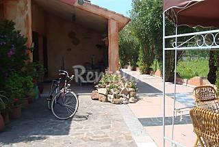 Villa para 9-10 personas a 600 m de la playa Olbia-Tempio