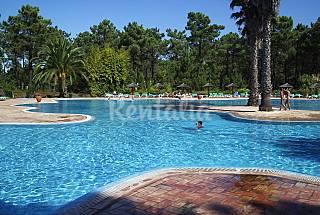 Appartement pour 6 personnes à 2.5 km de la plage Setúbal