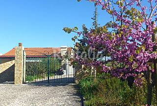 Villa with 4 bedrooms 15 km from the beach Lisbon