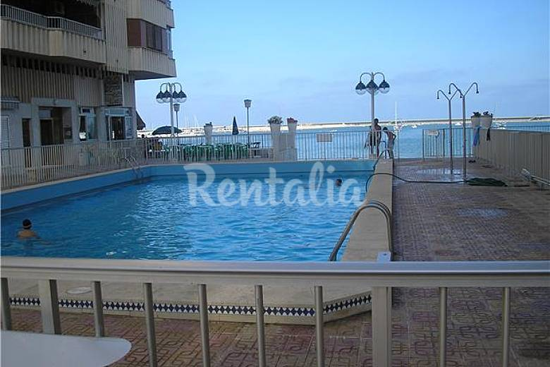 Apartamento en alquiler en 1a l nea de playa torrevieja alicante costa blanca - Alquilar apartamento en torrevieja ...