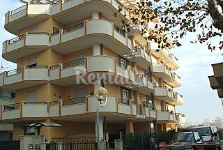 Appartamento per 2-4 persone150 mt mare,1km fiera Rimini