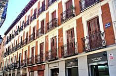 Totally equipped apartment in the centre of Madrid Madrid