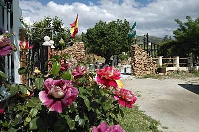 Casa para alugar com piscina Granada