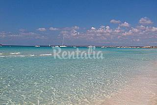 Apartment near the best beaches of Majorca  Majorca