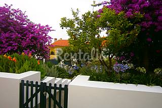 3 apartamentos con piscina Coímbra