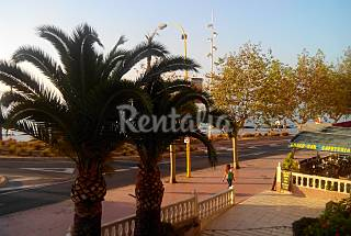 Apartment and studio on the beach front line Alicante
