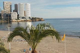 5 Apartments for rent on the beach front line Alicante