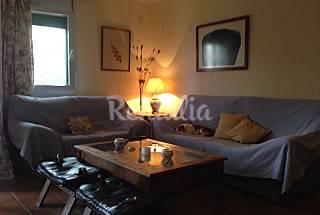 Apartamento en alquiler a 200 m de la playa Cádiz