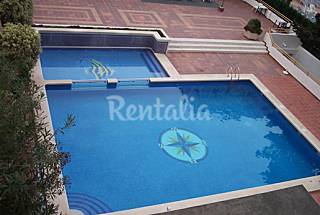 5 Apartments with 1 bedrooms only 75 meters from the beach Alicante