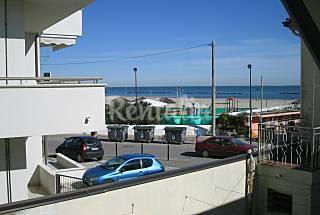 Casa in affitto in prima linea di spiaggia  Ferrara