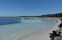Apartment with wifi only 100 meters from the beach Majorca