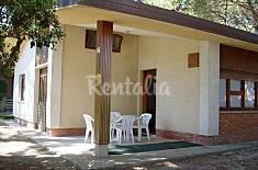 Wohnung für 5-7 Personen, 500 Meter bis zum Strand Udine
