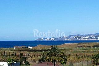 Top floor appartement at 300 m from the beach Granada